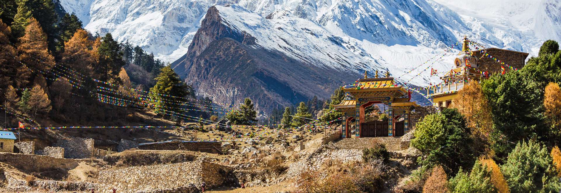 New fare flight to york kathmandu